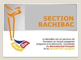 bachibac.jpg